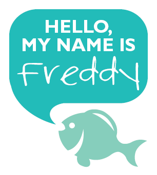 Hello My Name Is Freddy